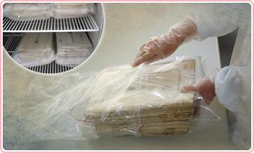檔案冷凍除蟲滅菌