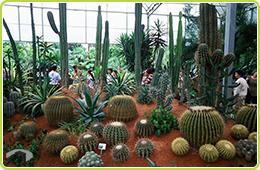圖11 北埔綠世界生態農場檔案