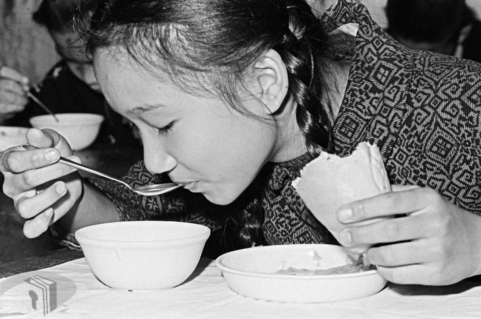 圖11 學童營養午餐