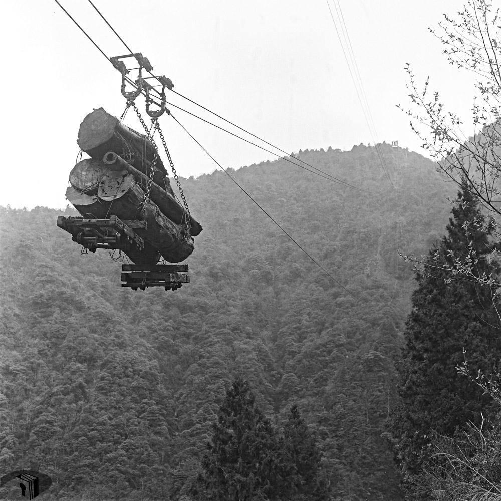 圖6 流籠吊運原木