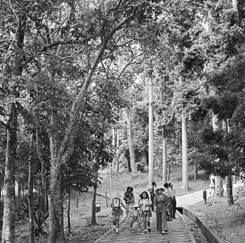 圖8 墾丁森林遊樂區一景
