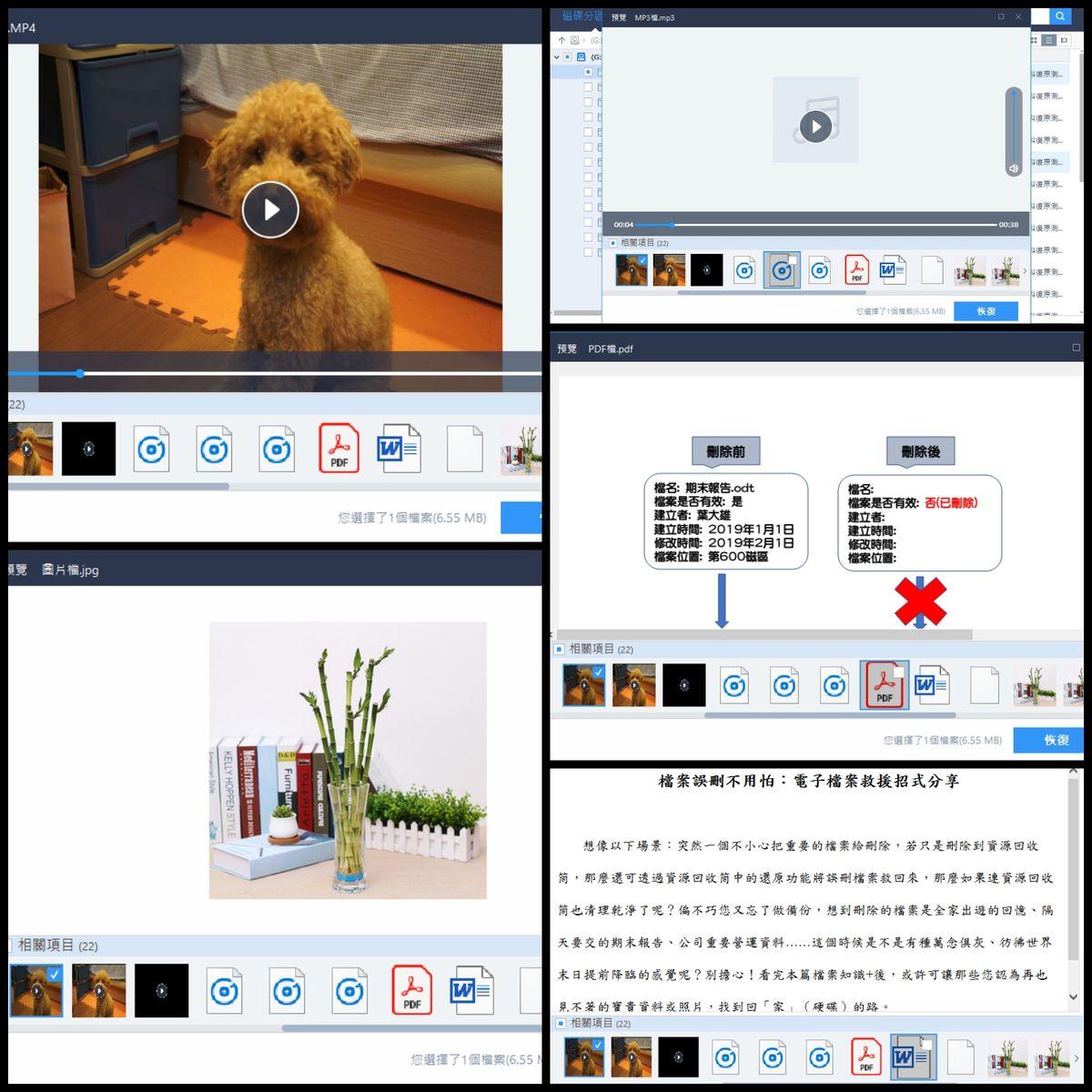 圖5 各類型救回檔案預覽(螢幕畫面)