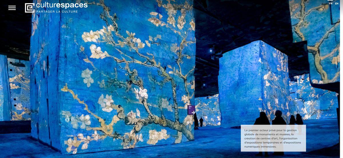 法國文化空間公司沉浸式藝術體驗展簡介